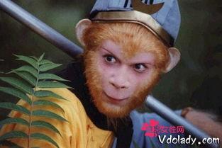 雄猴袭击女人并与之性交的故事数不胜数.时至今日,这种例子也不少...