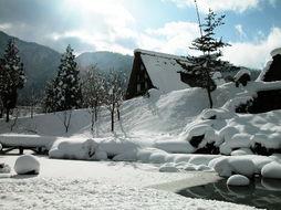 雪的名称大汇总