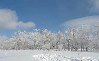 关于下雪的句子精选