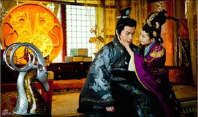 exo跨越千年之恋之不变的心跳-之后剧情:娄太后和西魏 勾结,发动宫变.萧贵妃已经怀了皇上的孩子...