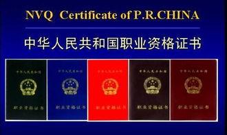 技工证取消-江苏省盐城技师学院 招生信息网