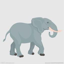 卡通大象图片