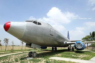 藏下,便花费了百万元买回了空机壳及放置飞机的土地;而一路运回的...