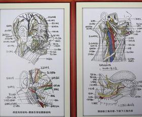 ... 疫苗已上市 重庆时时彩注册送39 中国新闻网