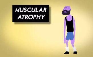 肌肉的破坏程度趋近于0,无法产生足够的压力,肌肉就不会有新的增...