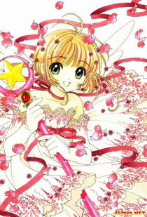 P,1996年漫画开始连载,1998年正式播放动画版.官方正式译名为《...