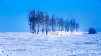 大雪谚语-今日大雪