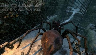 前面有2道门,一道实在走廊的尽头,一道是在走廊右边,都用蜘蛛丝...