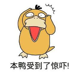 2 本鸭受到了惊吓!-表情 可达鸭表情包 可达鸭微信表情包 可达鸭QQ...