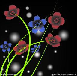夜晚绽放的花图片