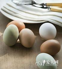 酒店大鸡吧后入-尽管鸡蛋的经验价值高,但是鸡蛋不是吃越多就越好.多吃鸡蛋容易造...