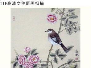 花鸟工笔画国画装饰无框挂画