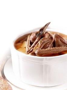 炖鸽子汤的做法 分享炖鸽子汤的烹饪技巧