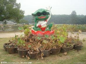 教你制作可爱的青蛙王子