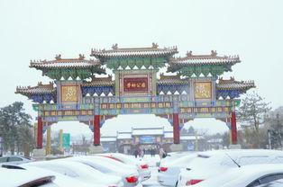 伴随雪花飘落,长春市二道区劳动公园里的人流依旧络绎不绝,欢声...