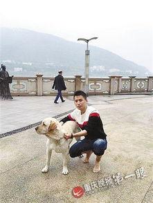 女子江边轻生 被七旬大爷和三条狗狗搭救
