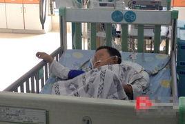 ,张家界桑植县凉水口镇的6岁男童豪豪被马蜂蛰伤20多处,生命垂危...