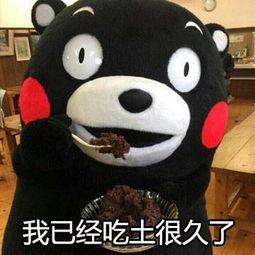 撩汉撩妹专用-行走的表情包熊本熊