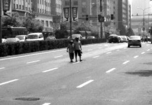 横穿马路图方便已成众多市民习惯