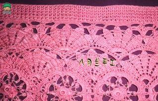 编织女士铜钱花毛衣的方法