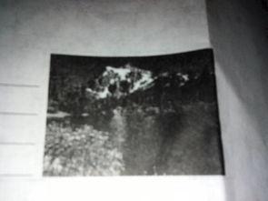 看图写出形容山 水 天气 花草树木的四字词语