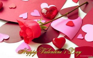 浪漫情人节的话语 两颗心的共鸣才是人生的真谛