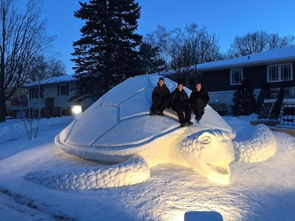 ...年下雪季节都会大显神通,将厚厚的积雪堆积雕刻成大型雪雕.这种...