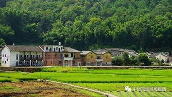 农业农村部和财政部共同发布今年财政重点强农惠农政策