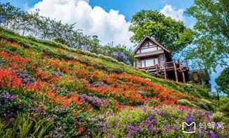 清迈旅游攻略,第一次去泰国清迈就该酱紫子玩 -清迈游记