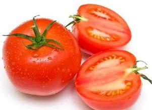 红蕃茄hk16-红番茄的适宜存放温度是0℃~4℃.-有效去除黑雀斑的食物 赶紧来看看...