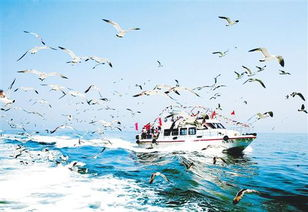 此路黄泉通九幽-长岛之美在于海.长岛的32个岛屿,呈南北纵状坐落在渤海海峡8700...