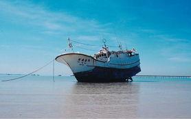 鬼凿墙-2003年,在澳大利亚海域人们发现了来自台湾的