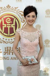 ...凤凰电视台著名主持人许戈辉、华裔女演员刘玉玲担纲主持人.-第12...