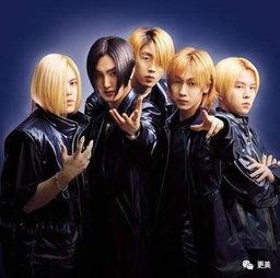 葬爱家族,永垂不朽!   后来出道... 把韩国偶像团体的发展了解的比...
