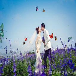 爱丽丝梦幻城堡第8张 日照诗华洛婚纱摄影相册 Wed114结婚网