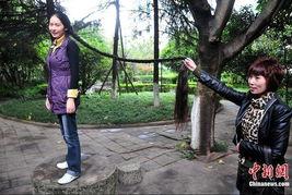 ...己蓄了15年的长发,她的头发长度远远超过了自己的身高.据刘春...