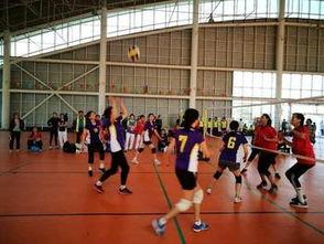 赛事汇 山东省全民健身气排球比赛结束 青岛夺老年组双冠