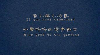 若不得不分离,也要好好的说声再见-带字的图片 中文带英文翻译的QQ...