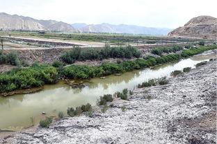 ...是在靖远县北湾镇天字村,当地修建排盐碱渠阻隔土地盐碱化(8月...