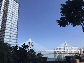 双公园小区外滩中心 宝华海景公寓附近世纪大桥恒大外滩旁