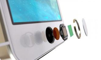 ...S6 中使用 Touch ID 风格指纹感测器 业界动态 Industrial Information ...