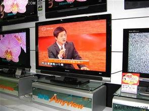 电元一气录-可录液晶电视是近期的热点产品,不过很多厂家的可录电视都还是新品...