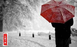 表情 2018关于下雪的唯美说说大全 下雪了唯美说说心情短句 9号资讯 ...