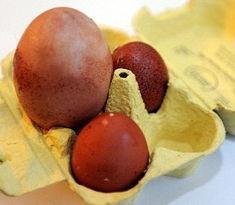 ...9克竖起来高约9厘米-科学家宣称破千古谜题 确认先有鸡后有蛋