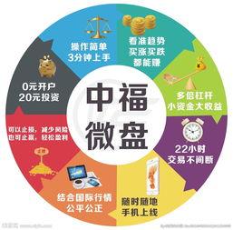 中福微盘圆形推广图图片