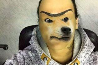 有女人和狗操逼的视频吗-女子奇特纹眉照爆红 网友配 doge 恶搞