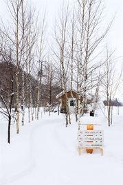 雪白静界 北海道