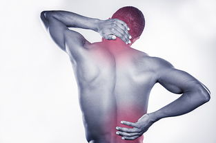 颈椎与腰椎疼痛高清图片