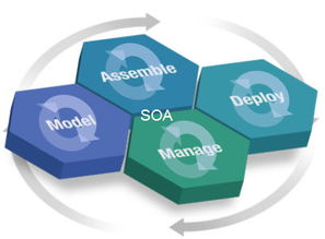 期管理阶段中的循环箭头表明,... 质量管理活动在每个阶段中进行迭...