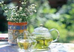 绿茶好坏的鉴别
